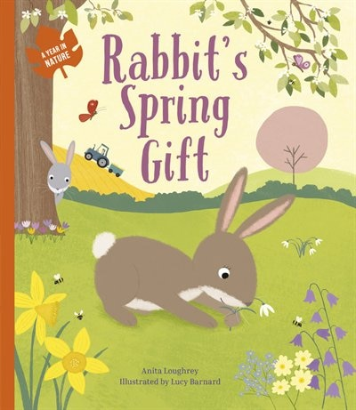 Rabbit's Spring Gift by Anita Loughrey