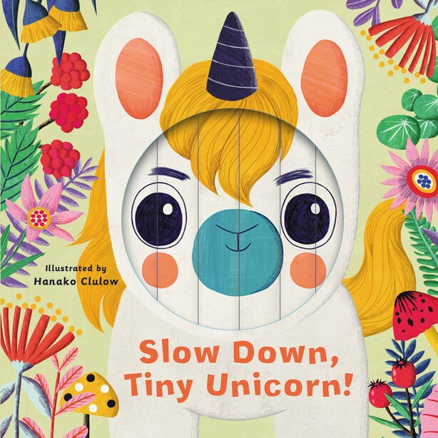 Little Faces: Slow Down, Tiny Unicorn! by Rhiannon Findlay