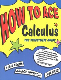 How To Ace Calculus: The Streetwise Guide