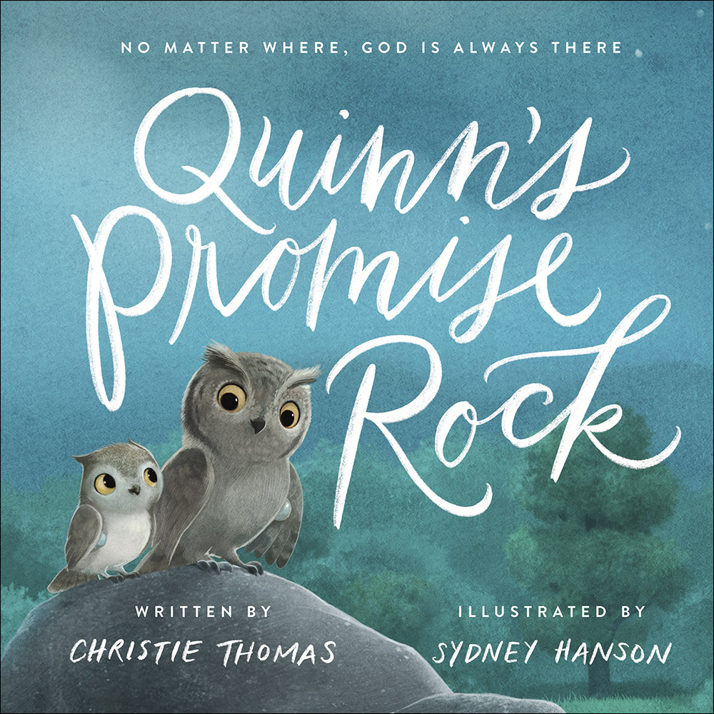 Quinn's Promise Rock by Christie Thomas