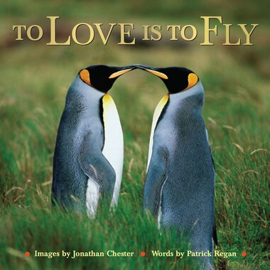 To Love Is to Fly by Jonathan Chester