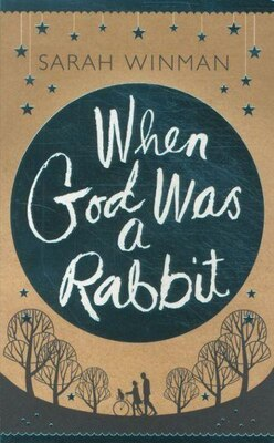 Book When God Was A Rabbit by Sarah Winman