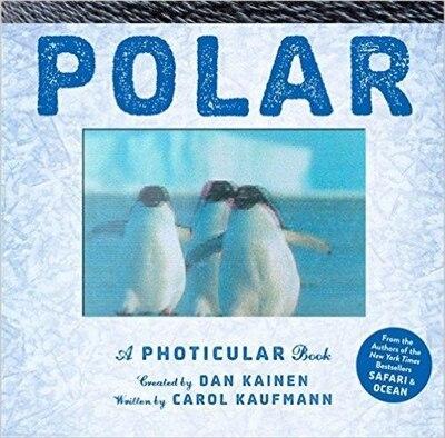 Polar: A Photicular Book by Dan Kainen