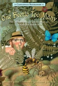 One Beetle Too Many: Candlewick Biographies: The Extraordinary Adventures Of Charles Darwin by Kathryn Lasky