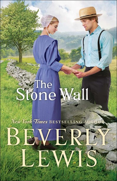 The Stone Wall by Lewis, Beverly