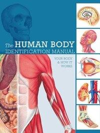 Human Body Identification Manual: Your Body And How It Works