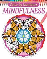 Color By Numbers - Mindfulness