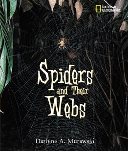 Spiders And Their Webs