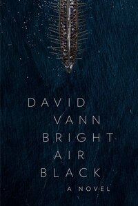 Bright Air Black: A Novel