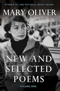 New And Selected Poems, Volume One: Volume One
