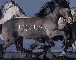 Book Equus by Tim Flach