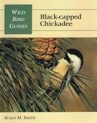Wild Bird Guide: Black-capped Chickadee
