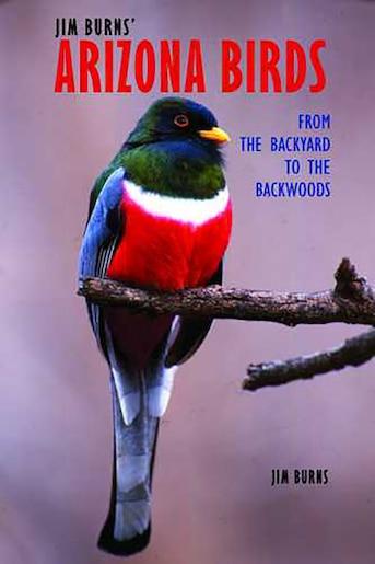 Jim Burns' Arizona Birds: From the Backyard to the Backwoods by Jim Burns
