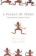 Plague Of Frogs: Unraveling An Environmental Mystery