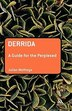 Derrida: A Guide for the Perplexed by Julian Wolfreys