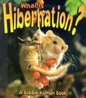 What is Hibernation