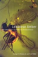 Lebanese Amber: The Oldest Insect Ecosystem In Fossilized Resin