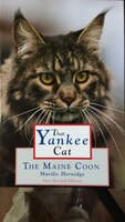 That Yankee Cat  The Maine Coon