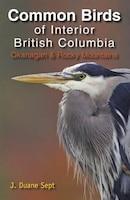 Common Birds of Interior British Columbia: Okanagan and Rocky Mountains