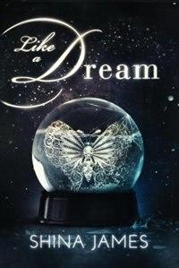 Like a Dream by Shina James