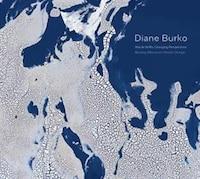 Diane Burko: Bearing Witness To Climate Change