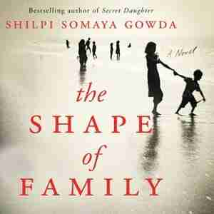 The Shape Of Family: A Novel by Shilpi Somaya Gowda