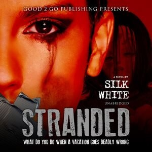 Stranded: A Novel de Silk White