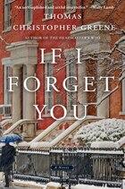 If I Forget You: A Novel