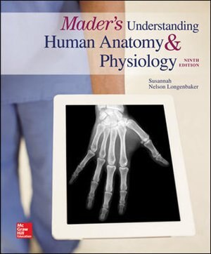Mader's Understanding Human Anatomy & Physiology by Susannah N. Longenbaker