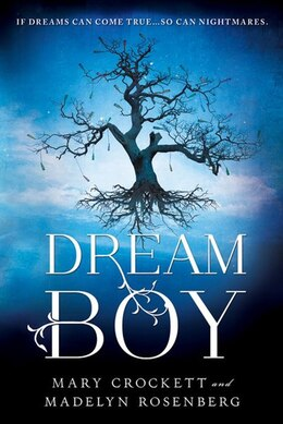 Book Dream Boy by Madelyn Rosenberg