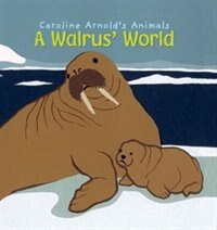 A Walrus World