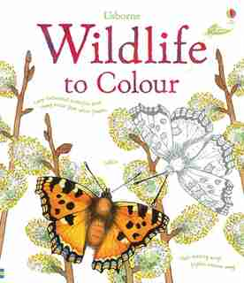 Wildlife To Colour by Sue Meredith