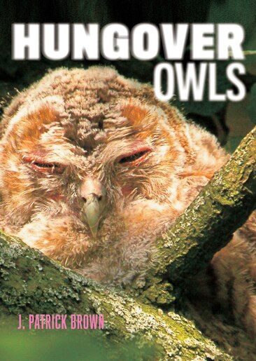 Hungover Owls by J. Patrick Brown
