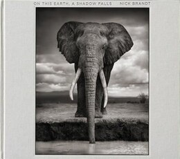 Book On This Earth, A Shadow Falls by Nick Brandt