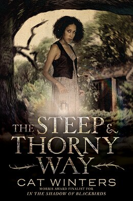 Book The Steep And Thorny Way by Cat Winters