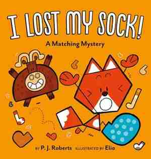 I Lost My Sock!: A Matching Mystery by P. J. Roberts