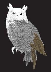 Brave Birds Notebook (paperback) by Maude White