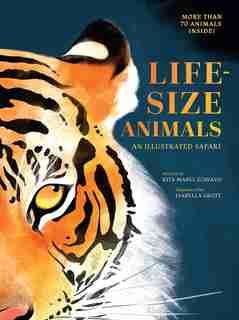 Life-size Animals: An Illustrated Safari by Rita Mabel Schiavo