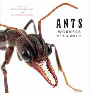Ants: Workers Of The World by Eleanor Spicer Rice