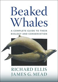 Beaked Whales: A Complete Guide To Their Biology And Conservation