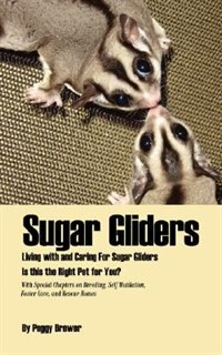 book report of sugar glider Sugar glider express, marrero, la 1k likes nawlin's own sugar glider express we take care of birds, lizards, bunnys, ferrets, sugar gliders, hedgehogs, rats.