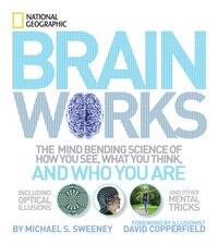 Brainworks: The Mind-bending Science Of How You See, What You Think, And Who You Are