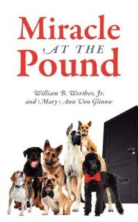 Miracle At The Pound: Teamwork, Leadership, Groups, Dogs, Miracle, Pound, Non-kill Pound, Poodle…