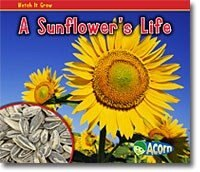 A Sunflowers Life
