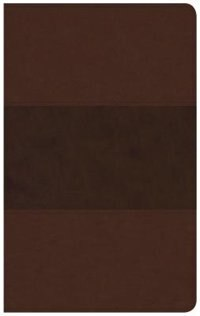 CSB ULTRATHIN REFERENCE BIBLE, SADDLE BROWN LEATHERTOUCH, INDEXED de Holman Bible Staff