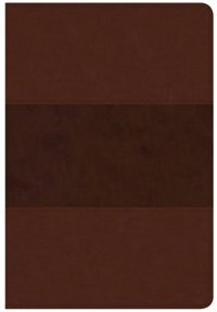 CSB GIANT PRINT REFERENCE BIBLE, SADDLE BROWN LEATHERTOUCH by Holman Bible Staff