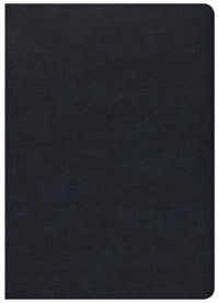 SHE READS TRUTH BIBLE, NAVY LEATHERTOUCH, INDEXED by Raechel Myers, Raechel