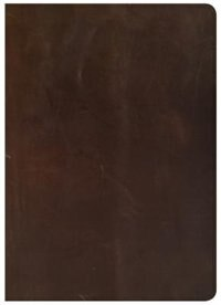 SHE READS TRUTH BIBLE, BROWN GENUINE LEATHER, INDEXED by Raechel Myers, Raechel