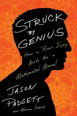 Book Struck By Genius: How A Brain Injury Made Me A Mathematical Marve by Maureen Seaberg