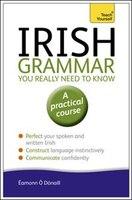 Irish Grammar You Really Need to Know